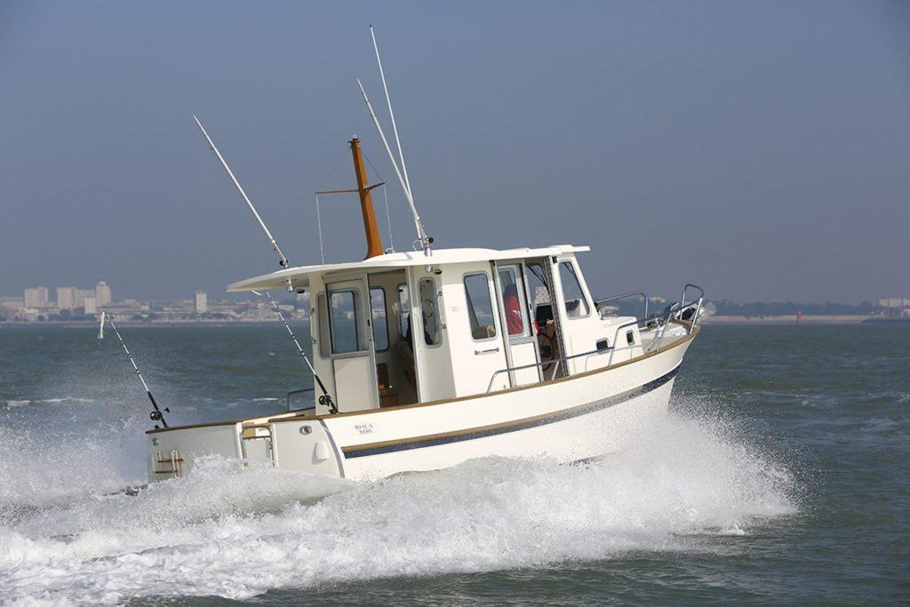Barco Rhea Timonier 800